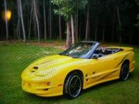 2002 Pontiac Firebird Trans Am 2dr Convertible