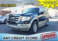 2009 Ford Expedition 4x4 Eddie Bauer 4dr SUV