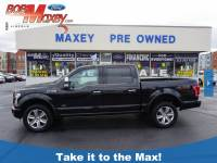 2015 Ford F-150 Platinum 4x4 Platinum SuperCrew 5.5 ft. SB 6 Cylinder EcoBoost in Detroit, MI