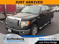 Used 2012 Ford F-150 XLT Truck V8 FFV for sale in O'Fallon IL