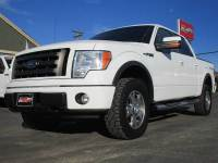 2010 Ford F-150 4x4 FX4 4dr SuperCrew Styleside 5.5 ft. SB