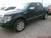 2013 Ford F-150 4x4 Platinum 4dr SuperCrew Styleside 5.5 ft. SB