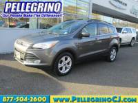 2013 Ford Escape FWD SE Sport Utility in Woodbury Heights