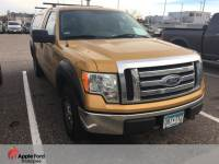 2009 Ford F-150 Truck V-8 cyl