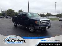 Used 2014 Ford F-150 XLT Truck V8 FFV for sale in O'Fallon IL