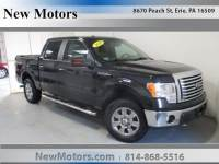 Erie Ford For Sale