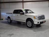 2009 Ford F-150 PLATINUM SUPERCREW 4X4 HEATED LEATHER LOADED V8!