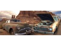 AMC Ambassador Car Parts
