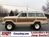 Jeep Wagoneer Headliner For Sale