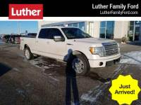 2010 Ford F-150 4WD Supercrew 157 Platinum Truck SuperCrew Cab V-8 cyl
