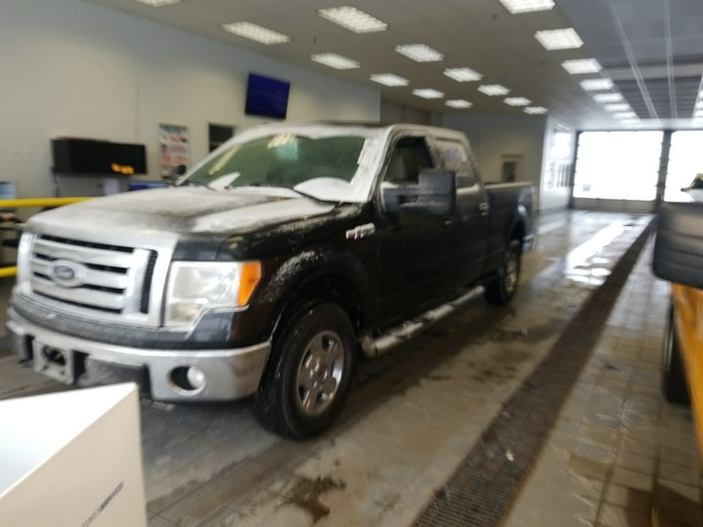 Photo 2010 Ford F-150 XL Pickup Truck