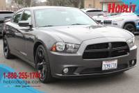 2014 Dodge Charger SXT w/ Blacktop Package