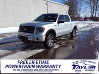 Used 2013 Ford F-150 For Sale | Martin TN