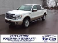 Used 2014 Ford F-150 For Sale | Martin TN