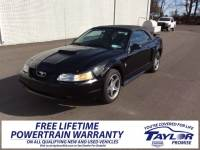 Used 1999 Ford Mustang For Sale | Martin TN