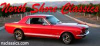 1966 Ford Mustang -SHELBY GT CLONE-
