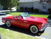 1955 Ford Thunderbird -BABY BIRDS- ICONIC CARS EVER BUILT-