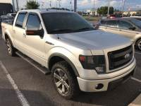 2014 Ford F-150 FX4 Truck SuperCrew Cab 4x4 in Pensacola