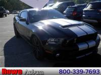 2010 Ford Shelby GT500 Shelby GT500 Coupe V8