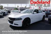 Certified Used 2016 Dodge Charger R/T Sedan in Miami