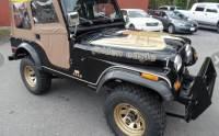 1978 Jeep CJ-5 -GOLDEN EAGLE-SOFT TOP-FIBERGLASS BODY-304 V8- DOCUMENTED