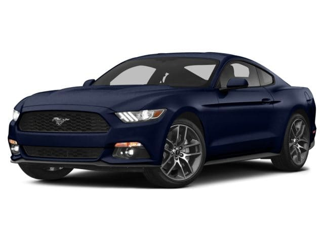 Photo 2015 Ford Mustang GT 50 Years Limited Edition Fastback GT 50 Years Limited Edition in New Braunfels