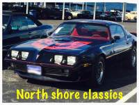1979 Pontiac Formula/Trans Am Nice paint- Well maintained with T Tops