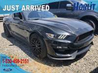 2017 Ford Mustang GT Premium 5.0 V8 M/T w/ Performance Package