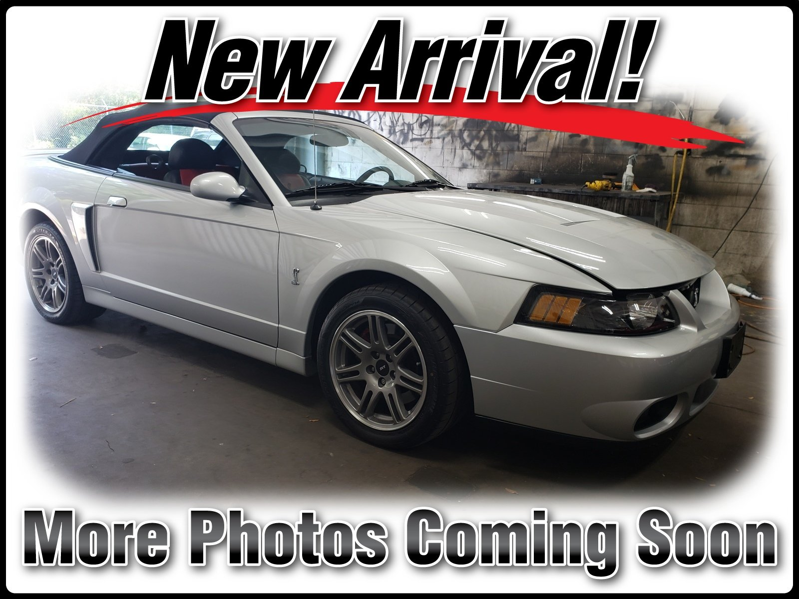 Photo Pre-Owned 2003 Ford Mustang Cobra Convertible in Jacksonville FL