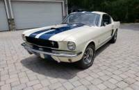 1966 Ford Mustang -GT 350 SHELBY FASTBACK TRIBUTE-