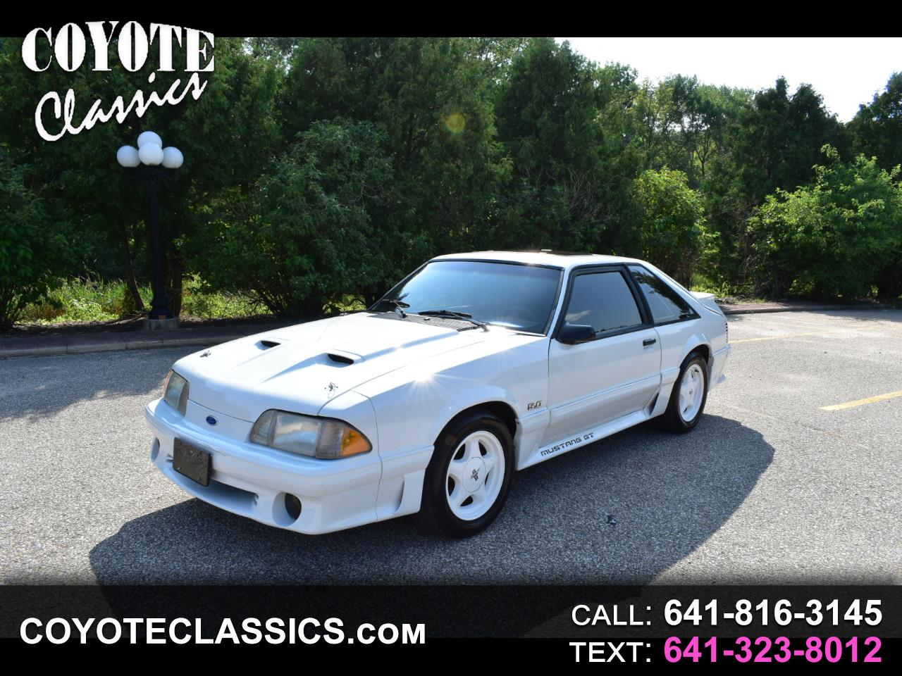 Photo 1990 Ford MUSTANG GT