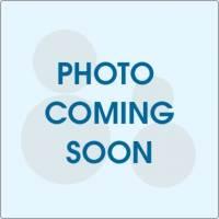 2015 Honda Accord LX Sedan in Lynnfield