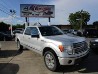 2010 Ford F-150 4x4 Platinum 4dr SuperCrew Styleside 6.5 ft. SB
