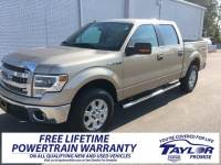 Used 2014 Ford F-150 For Sale   Martin TN