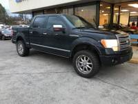 2010 Ford F-150 Platinum Pickup