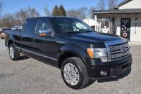 Used 2010 Ford F-150 Platinum