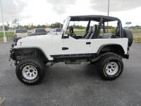 1994 Jeep Wrangler 2dr SE 4WD SUV