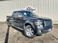 2012 Ford F-150 FX4 in Colorado Springs