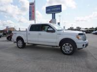 2010 Ford F-150 Platinum 4WD 145WB Pickup