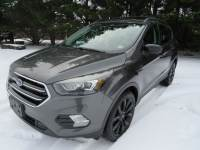 Used 2017 Ford Escape For Sale at Duncan Suzuki | VIN: 1FMCU9GD2HUA02363