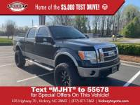 Used 2009 Ford F-150 King Ranch Pickup
